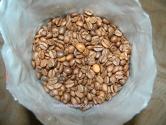 Salvador Especial Cafeterias 1 kg (Испания) - кофе в зернах